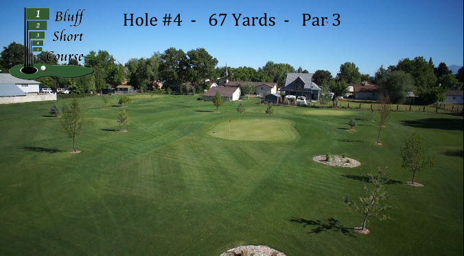 2013 Bluff Short Course Hole #4 w logo